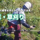 草刈り・除草
