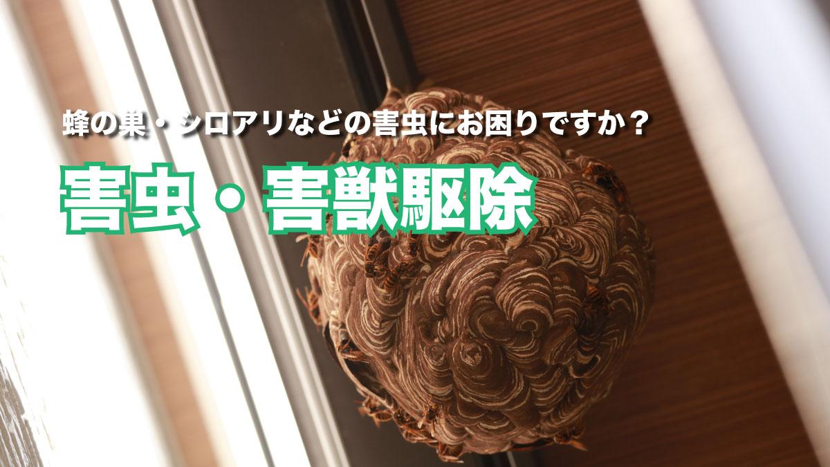 シロアリ駆除・蜂の巣・害虫駆除